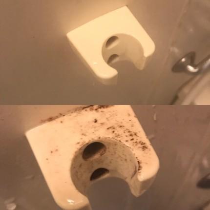 浴室カビ除去